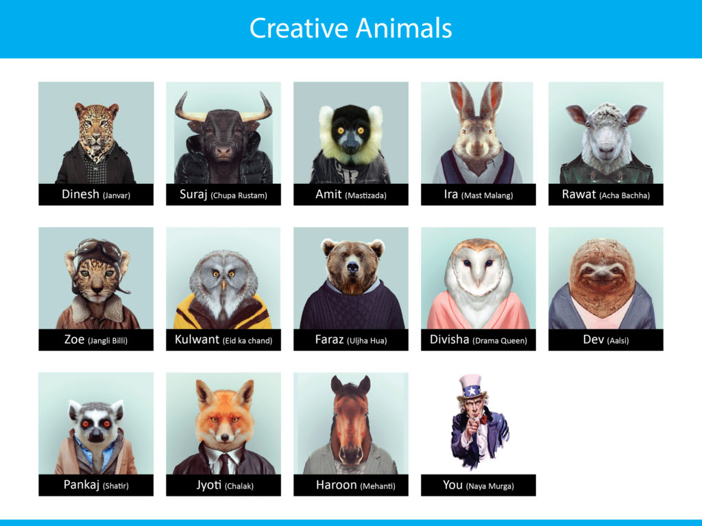creative animals